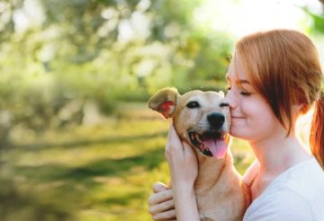 Everything You Need to Know About Pet Insurance